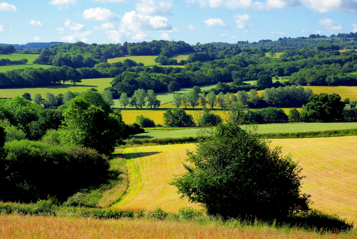 High Weald à Burwash © French Moments