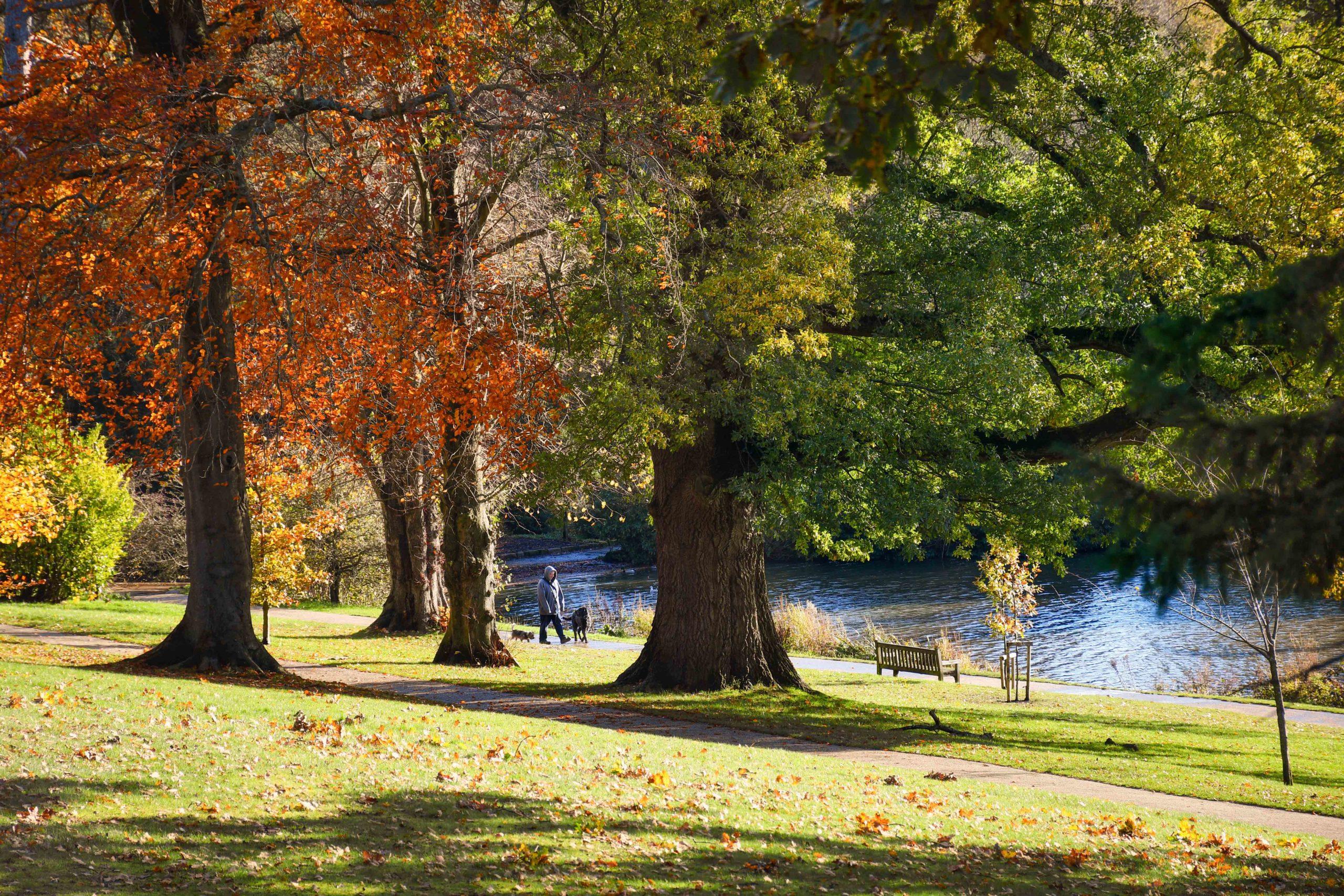 Dunorlan Park à Royal Tunbridge Wells © French Moments