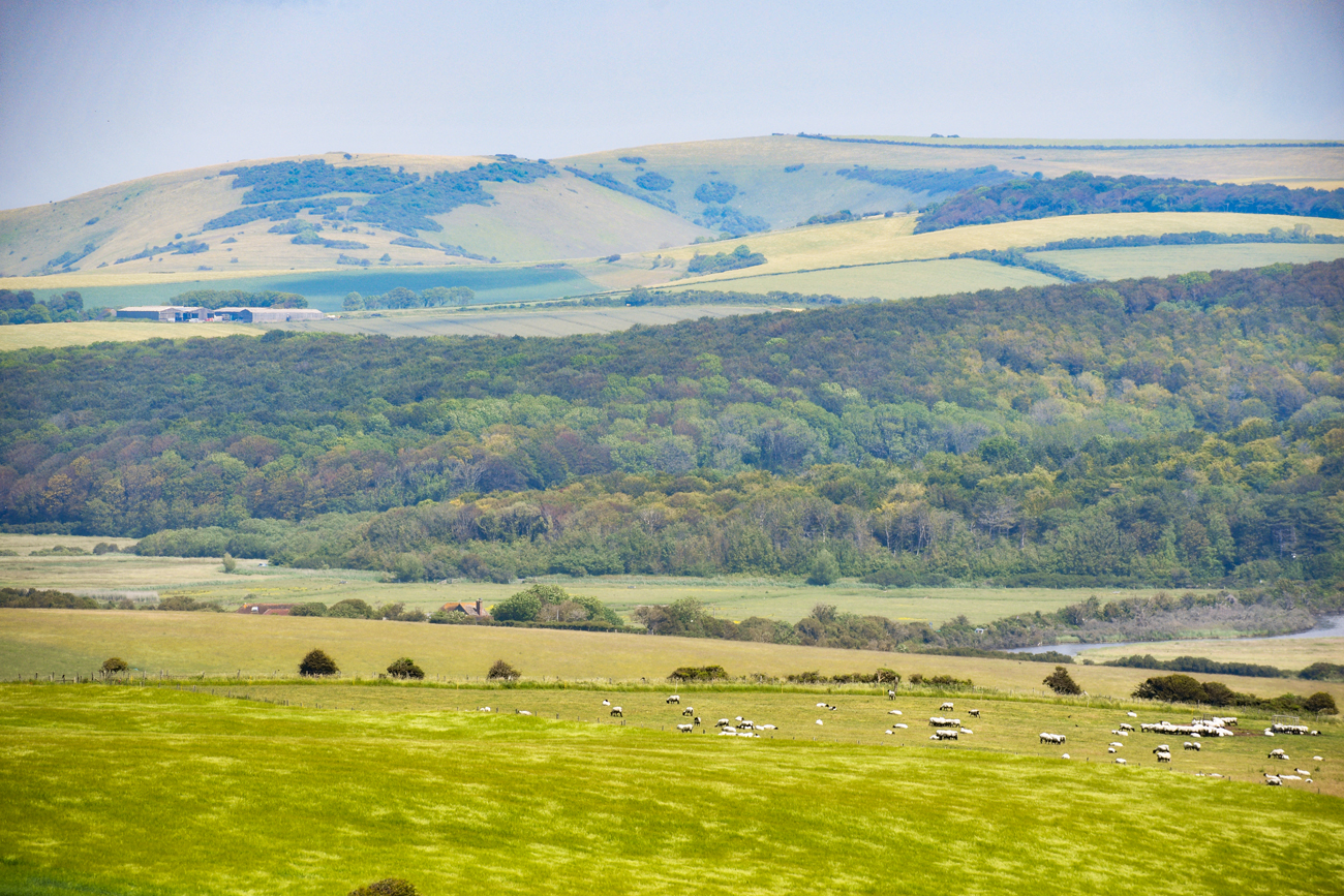 South Downs © French Moments
